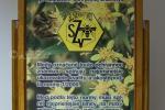 2019_10_01-100-rokov-včelárstva-na-Slovensku-001d