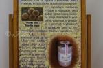 2019_10_01-100-rokov-včelárstva-na-Slovensku-001e