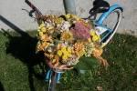 2021_09_25-PN-Zdobenie-bicyklov-a-cyklojazda-012