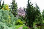 2021_05_19-BL-Botanicka-zahrada-011