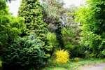 2021_05_19-BL-Botanicka-zahrada-013