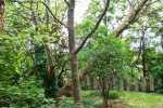 2021_05_19-BL-Botanicka-zahrada-019
