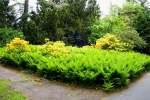 2021_05_19-BL-Botanicka-zahrada-021