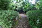 2021_05_19-BL-Botanicka-zahrada-024