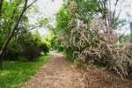 2021_05_19-BL-Botanicka-zahrada-029