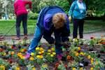 2020_06_03-Brigáda-dôchodcov-a-Diadub-u-012