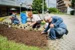 2020_06_03-Brigáda-dôchodcov-a-Diadub-u-019