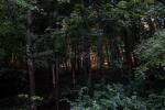 1_2021_09_11-IL-Ilavska-25-ka-010