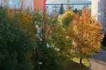 2021_10_22-Dca-Zlata-Dubnica-nad-Vahom-010