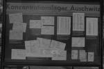 2021_08_07-PL-Koncentracny-tabor-Auschwitz-I-007