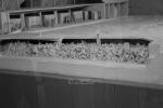 2021_08_07-PL-Koncentracny-tabor-Auschwitz-I-059
