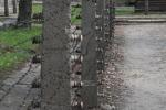 2021_08_07-PL-Koncentracny-tabor-Auschwitz-I-128