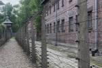 2021_08_07-PL-Koncentracny-tabor-Auschwitz-I-130