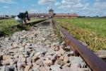 2021_08_07-PL-Koncentracny-tabor-Auschwitz-II-Birkenau-001