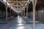 2021_08_07-PL-Koncentracny-tabor-Auschwitz-II-Birkenau-011