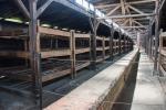 2021_08_07-PL-Koncentracny-tabor-Auschwitz-II-Birkenau-016
