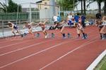 2019_07_27-Majstrovstvá-Slovenska-v-atletike-2019-213