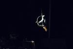 2017_05_11 Nový cirkus YOUNAK 020